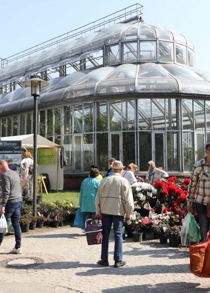 Botanischer Garten: Auf dem Staudenmarkt 2019