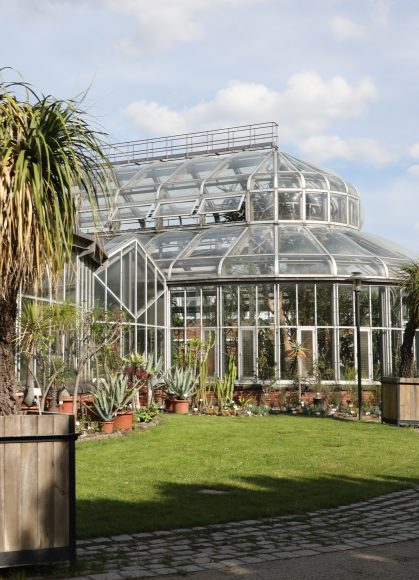 Hoher Sanierungsbedarf festgestellt: Hauptausschuss des Berliner Abgeordnetenhauses besuchte den Botanischen Garten Berlin