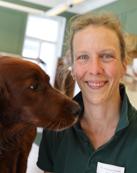 Tierarztpraxis am Schlachtensee: Für die Tiere da!