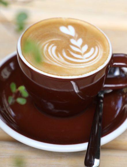 Kaffee & Kuchen im Café Fuchs Curtis: Regional inspirierte Köstlichkeiten für die Seele!